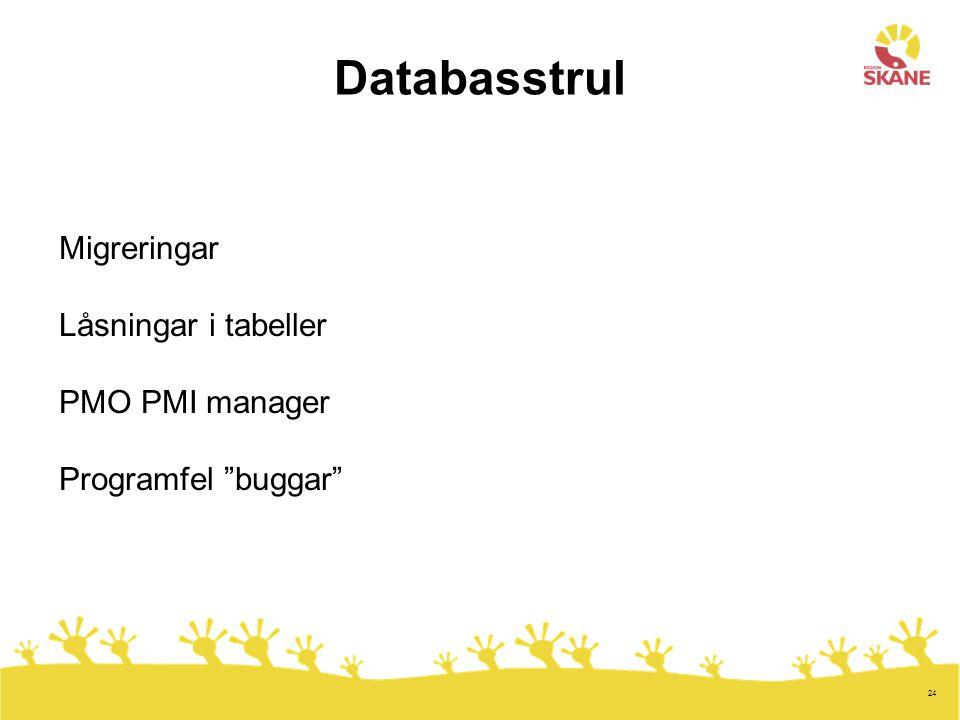 Databasstrul Migreringar Låsningar i tabeller PMO PMI manager