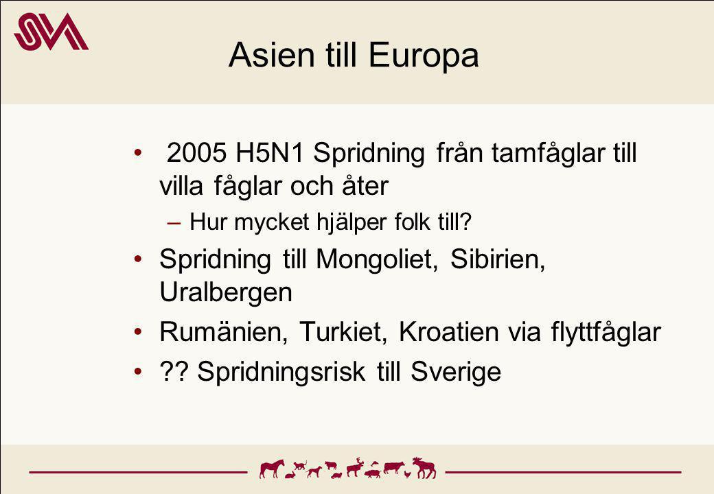 Asien till Europa 2005 H5N1 Spridning från tamfåglar till villa fåglar och åter. Hur mycket hjälper folk till