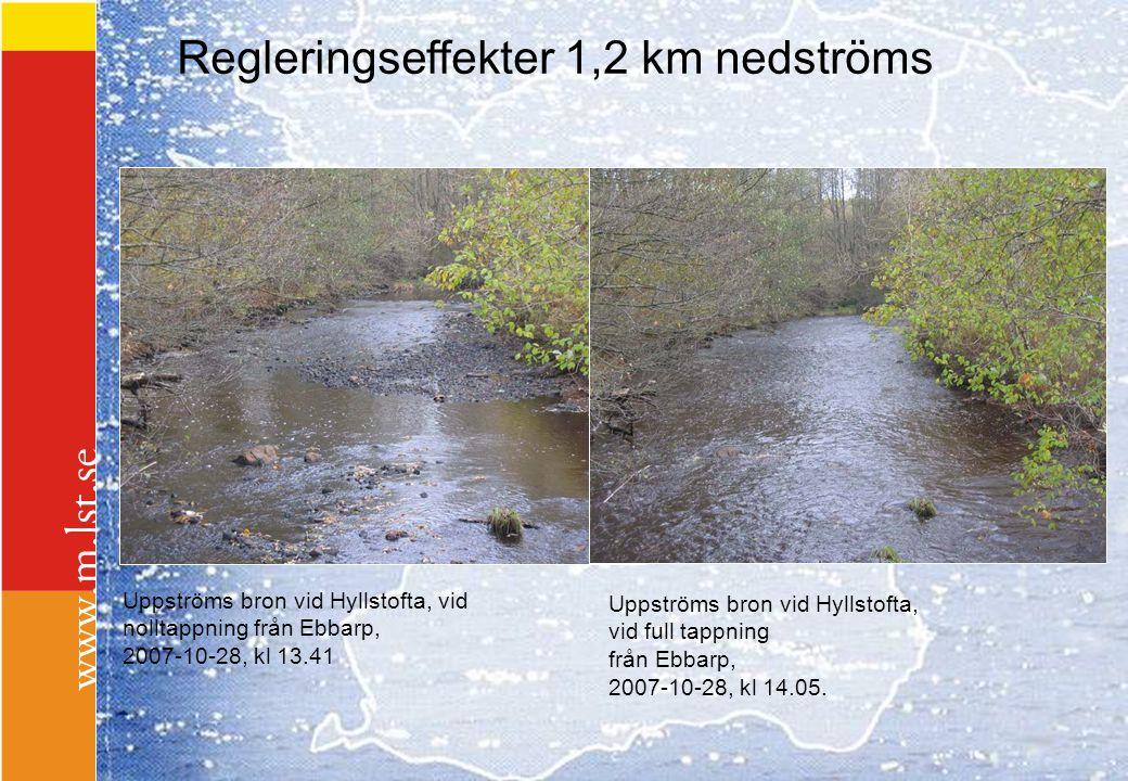 Regleringseffekter 1,2 km nedströms