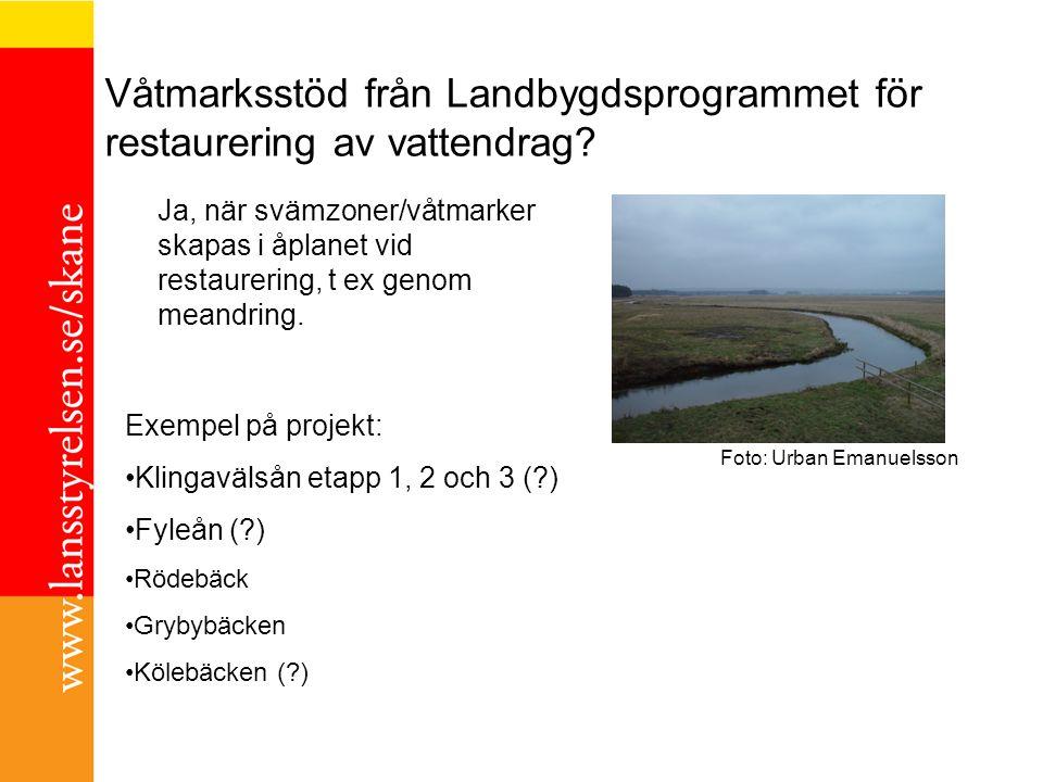Våtmarksstöd från Landbygdsprogrammet för restaurering av vattendrag