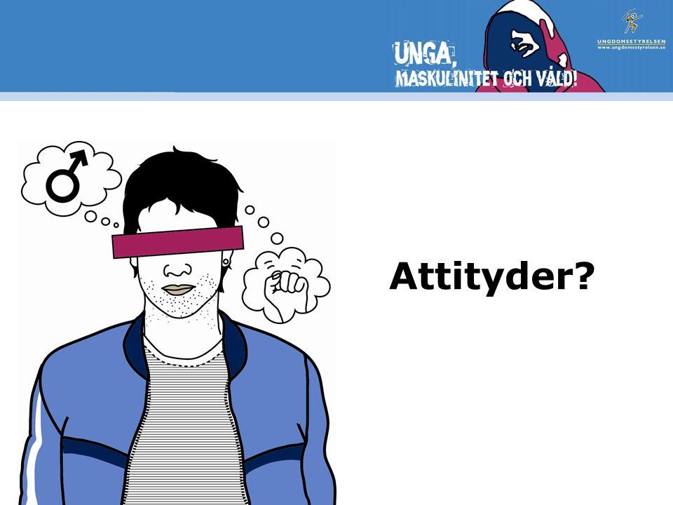 Attityder Befintlig statistik – nu med ungdoms- och genusperspektiv