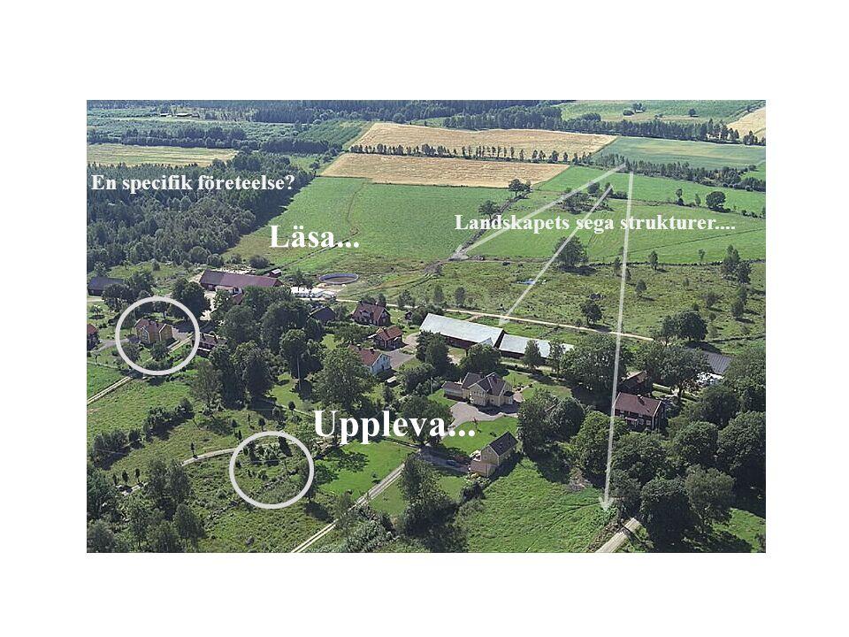 En specifik företeelse Landskapets sega strukturer....