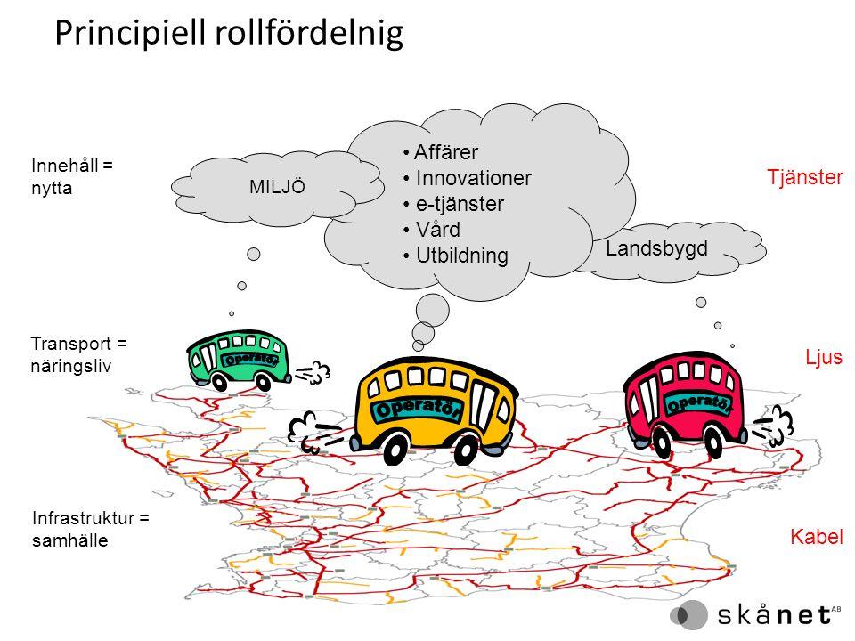 Principiell rollfördelnig