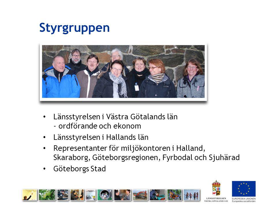 Styrgruppen Länsstyrelsen i Västra Götalands län - ordförande och ekonom. Länsstyrelsen i Hallands län.