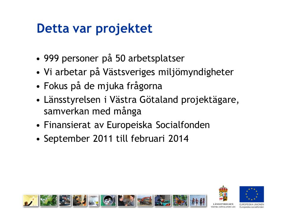 Detta var projektet 999 personer på 50 arbetsplatser