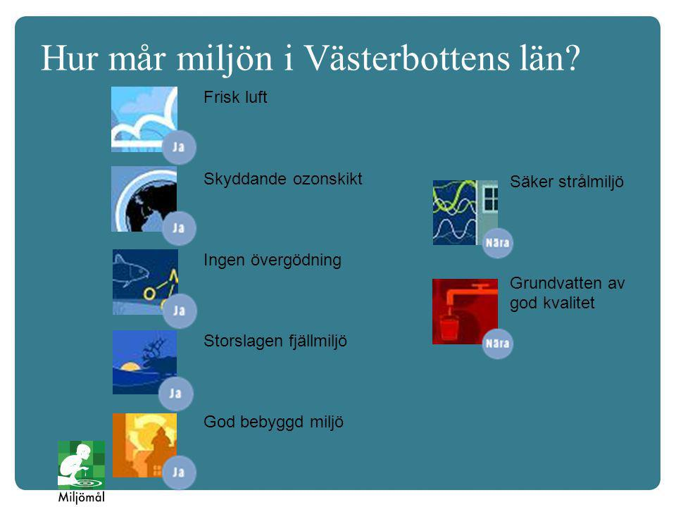 Hur mår miljön i Västerbottens län