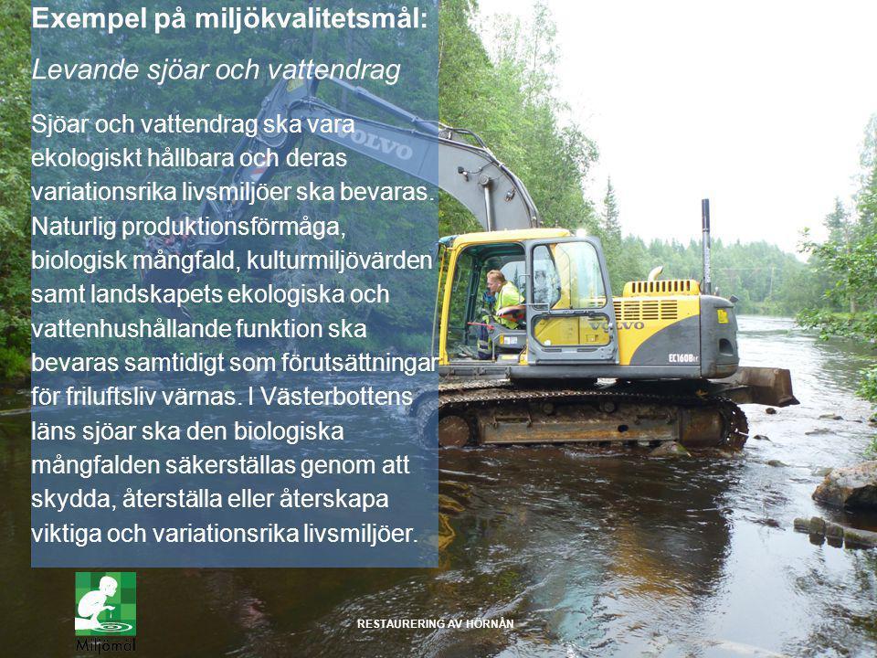 Exempel på miljökvalitetsmål: Levande sjöar och vattendrag