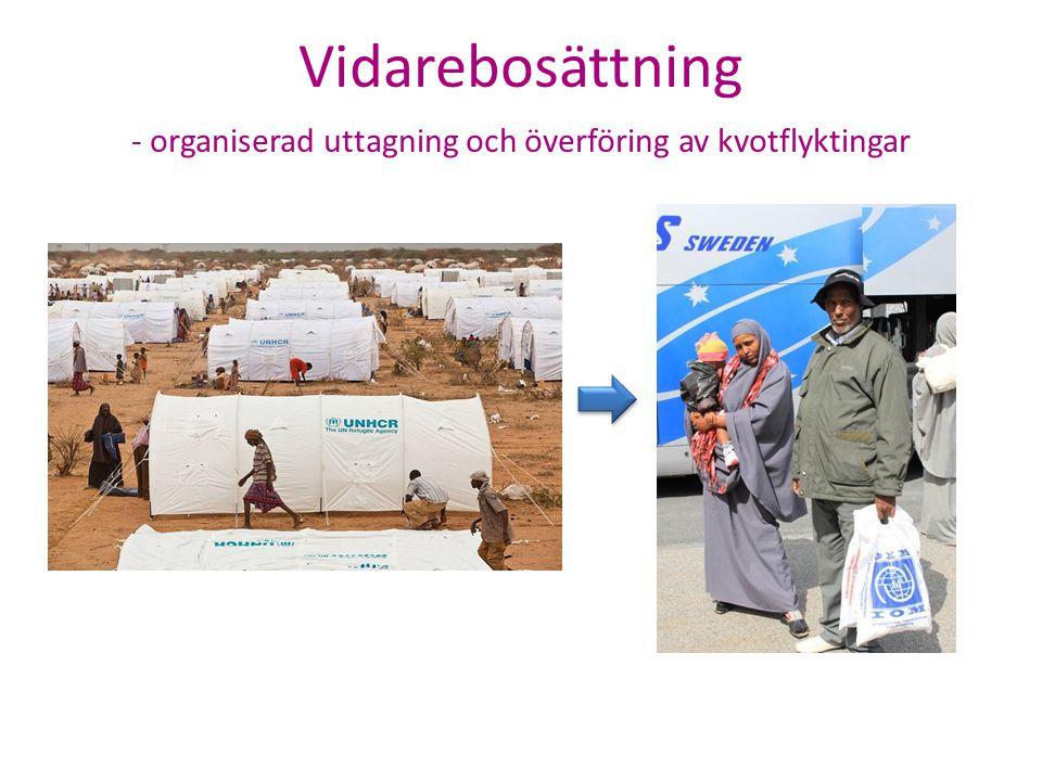 Vidarebosättning - organiserad uttagning och överföring av kvotflyktingar