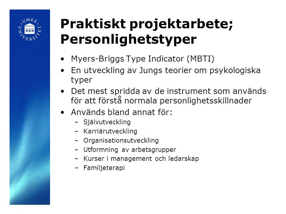 Praktiskt projektarbete; Personlighetstyper
