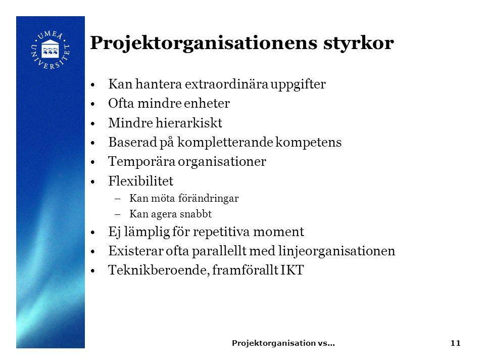 Projektorganisation vs...