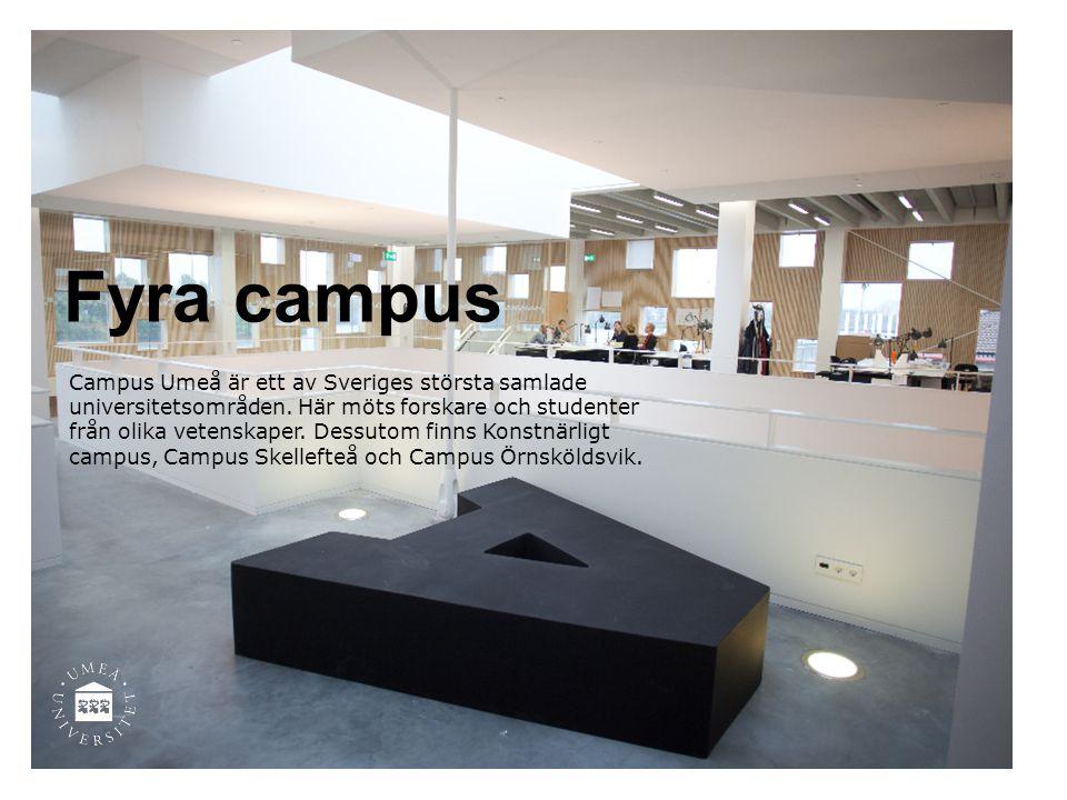 Fyra campus