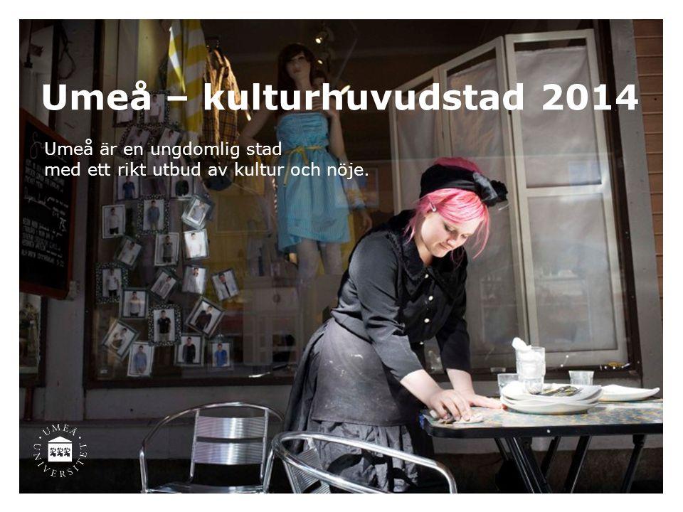 Umeå – kulturhuvudstad 2014