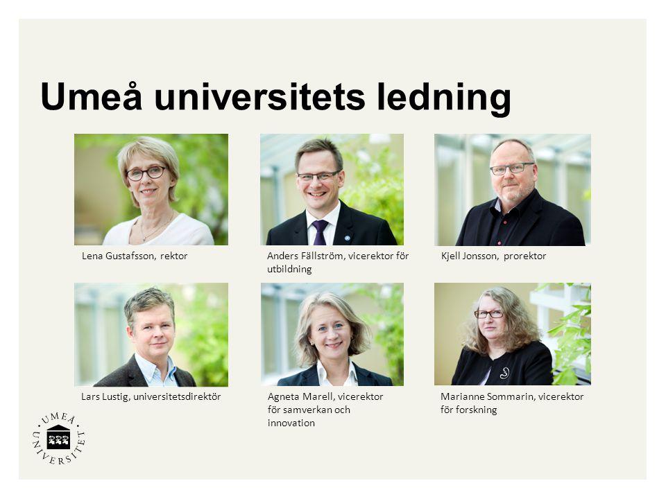 Umeå universitets ledning