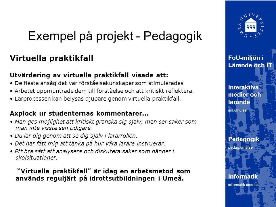 Exempel på projekt - Pedagogik