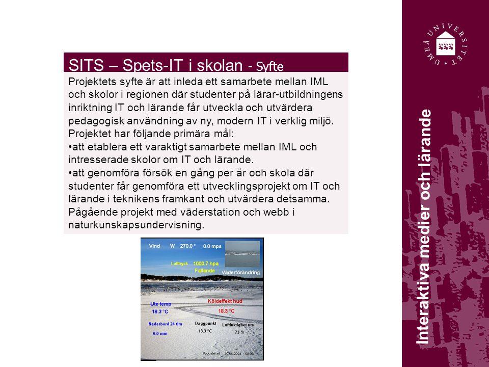 SITS – Spets-IT i skolan - Syfte