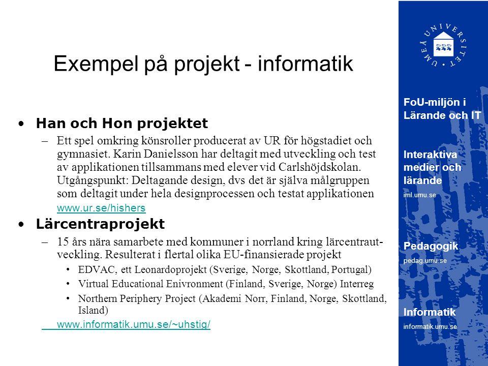 Exempel på projekt - informatik