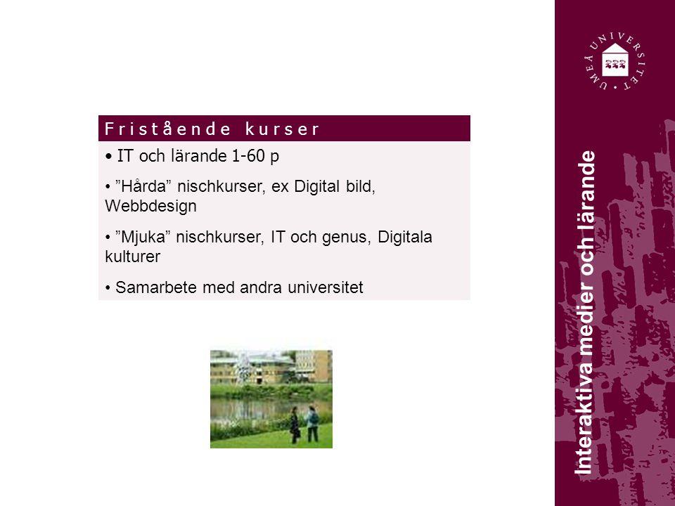 Interaktiva medier och lärande