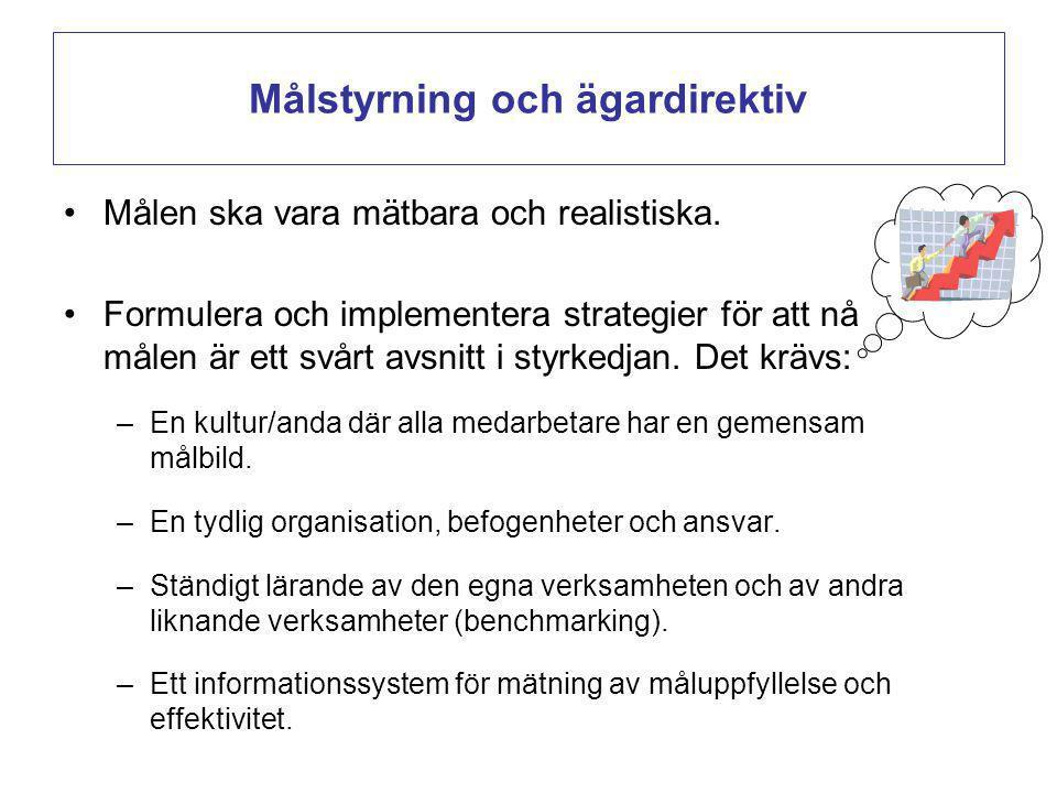 Målstyrning och ägardirektiv