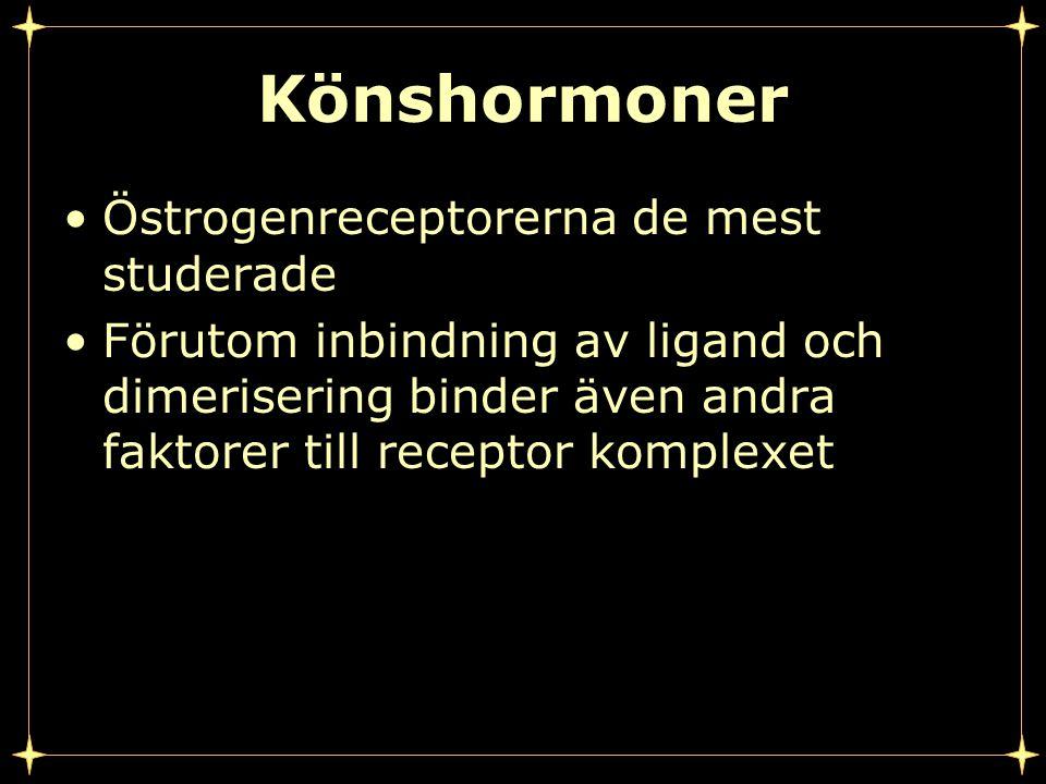 Könshormoner Östrogenreceptorerna de mest studerade