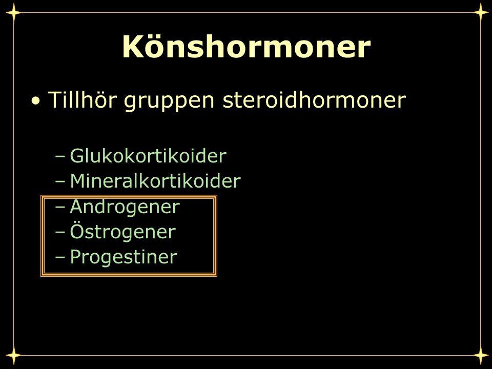 Könshormoner Tillhör gruppen steroidhormoner Glukokortikoider