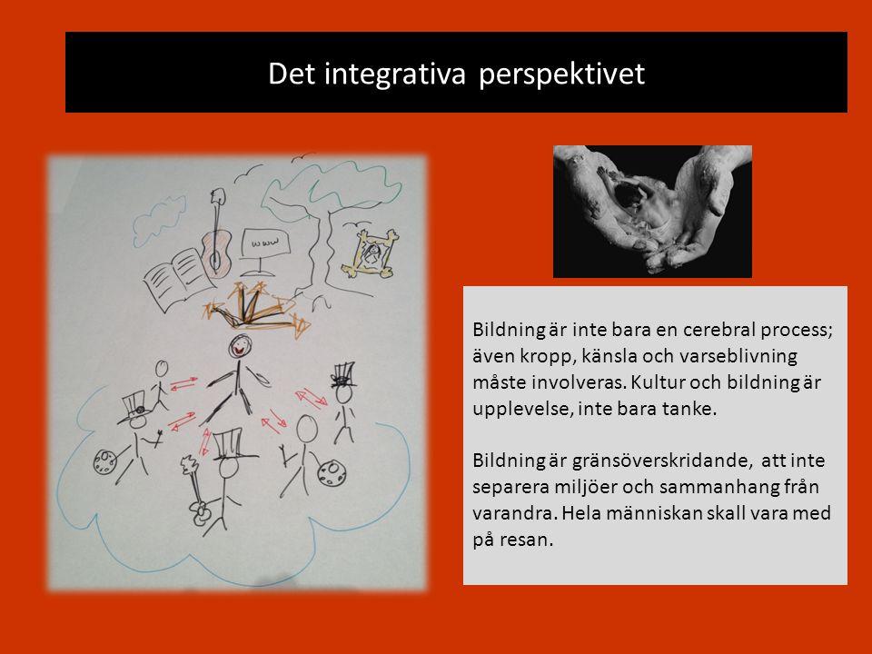 Det integrativa perspektivet