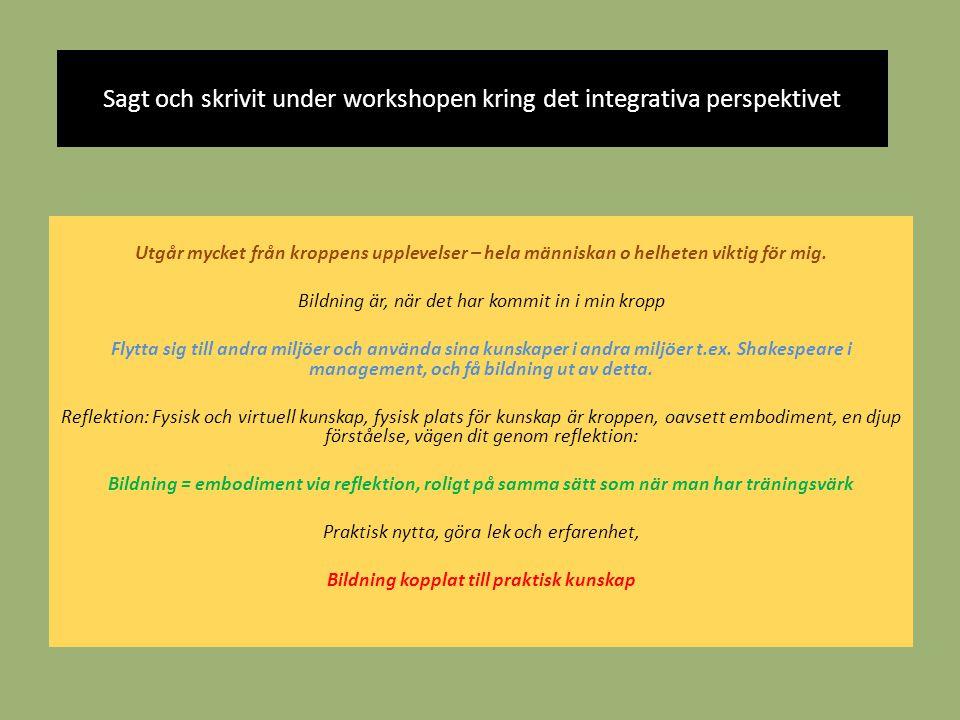 Sagt och skrivit under workshopen kring det integrativa perspektivet
