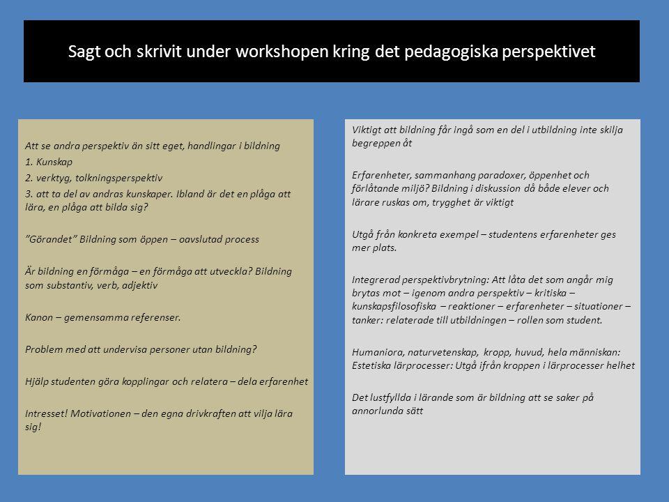 Sagt och skrivit under workshopen kring det pedagogiska perspektivet