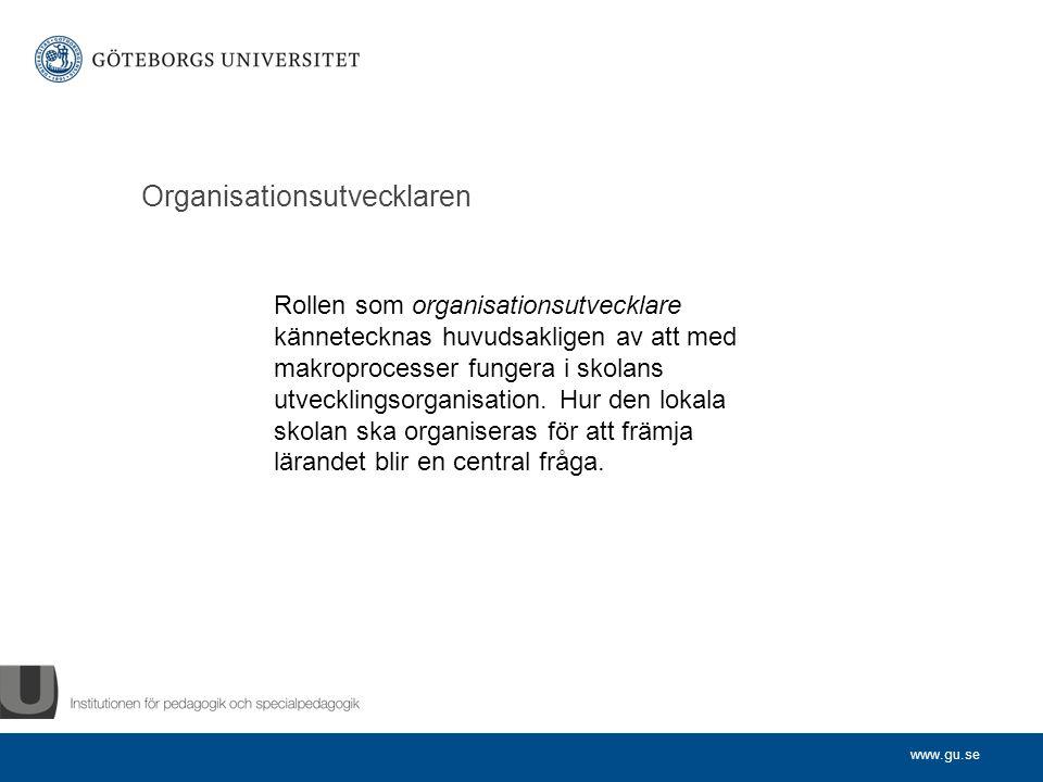 Organisationsutvecklaren