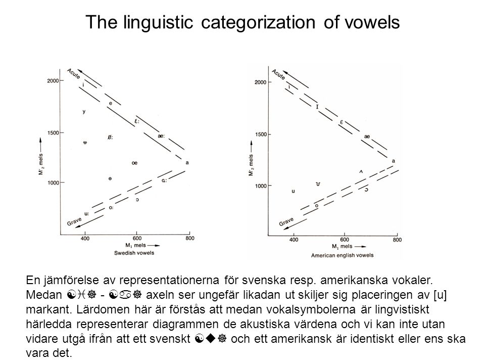 The linguistic categorization of vowels