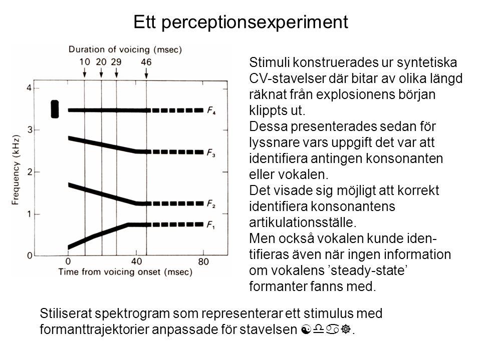 Ett perceptionsexperiment