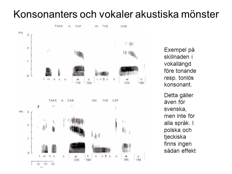 Konsonanters och vokaler akustiska mönster
