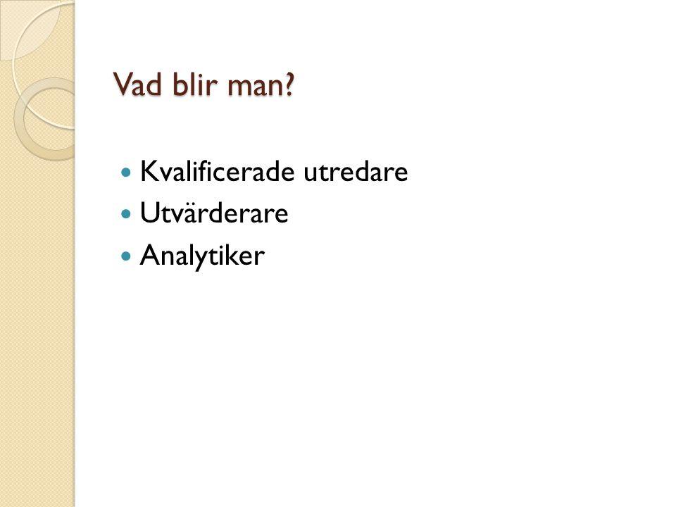 Vad blir man Kvalificerade utredare Utvärderare Analytiker