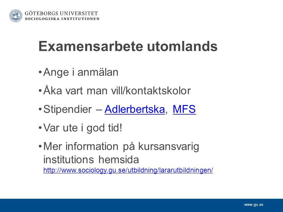 Examensarbete utomlands