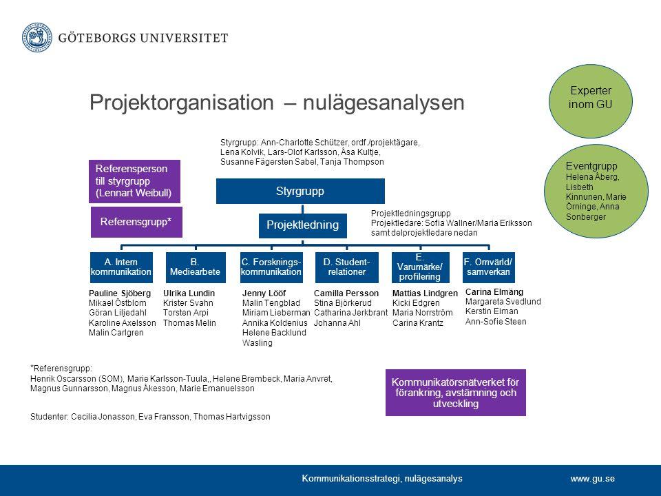 Projektorganisation – nulägesanalysen