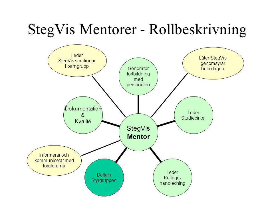StegVis Mentorer - Rollbeskrivning