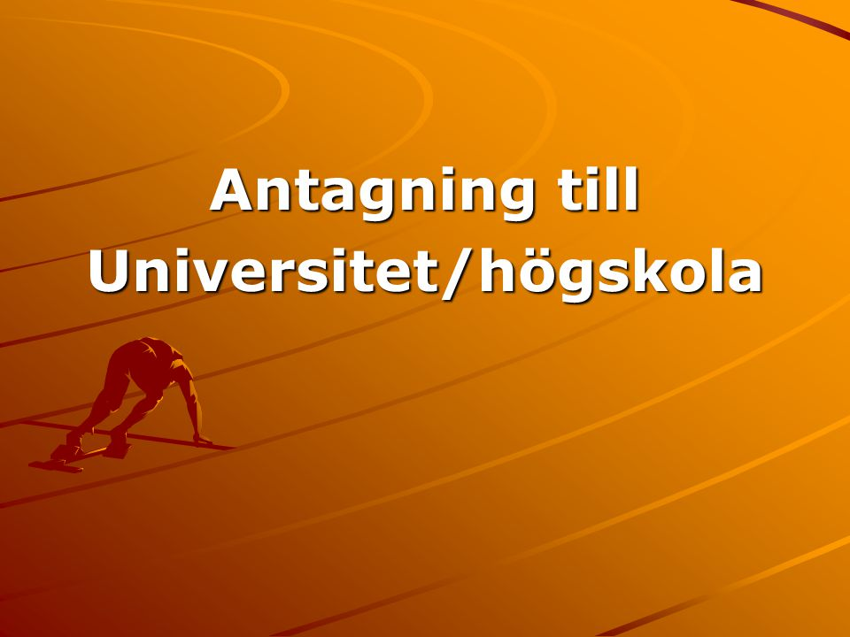 Universitet/högskola