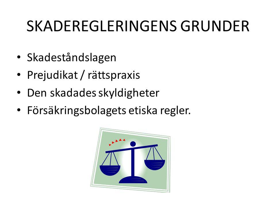 SKADEREGLERINGENS GRUNDER