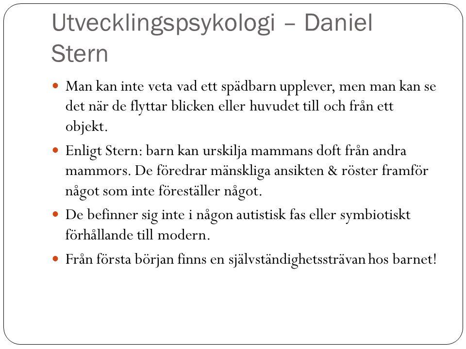 Utvecklingspsykologi – Daniel Stern