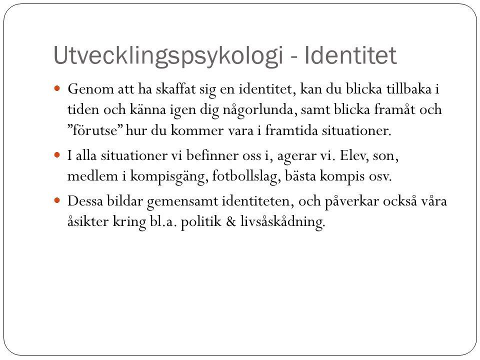 Utvecklingspsykologi - Identitet
