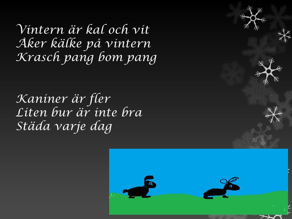 Vintern är kal och vit Åker kälke på vintern. Krasch pang bom pang. Kaniner är fler. Liten bur är inte bra.
