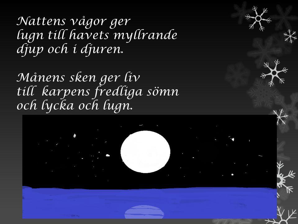 Nattens vågor ger lugn till havets myllrande. djup och i djuren. Månens sken ger liv. till karpens fredliga sömn.