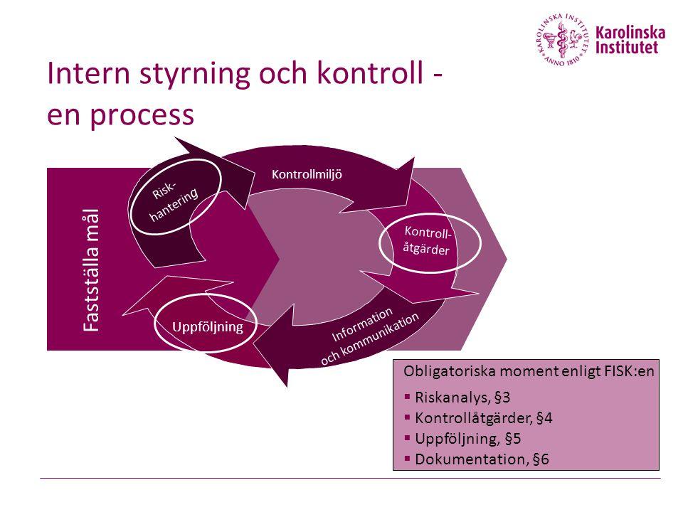 Intern styrning och kontroll - en process