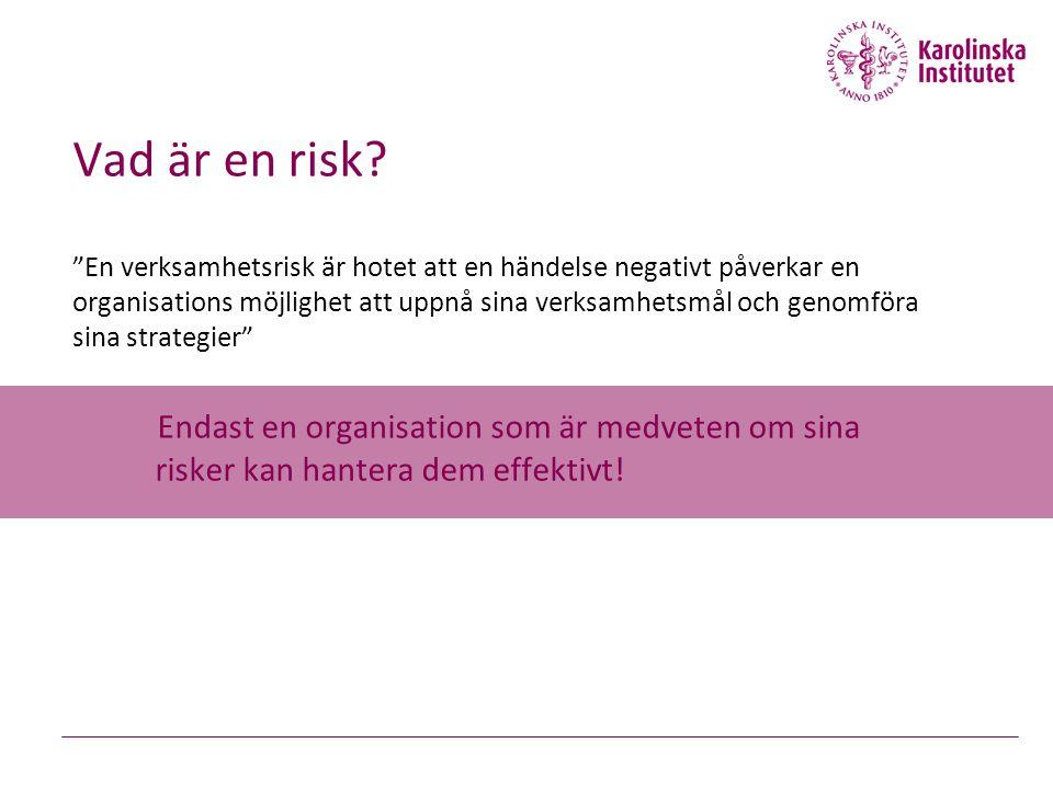 Vad är en risk