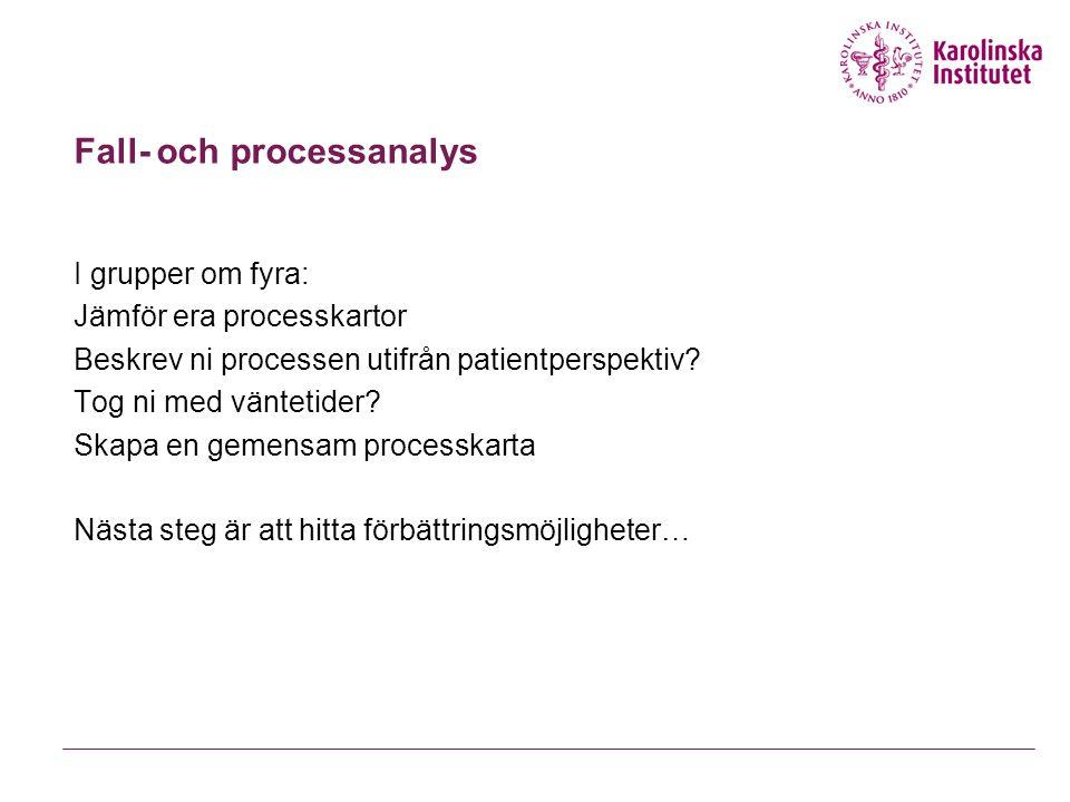 Fall- och processanalys
