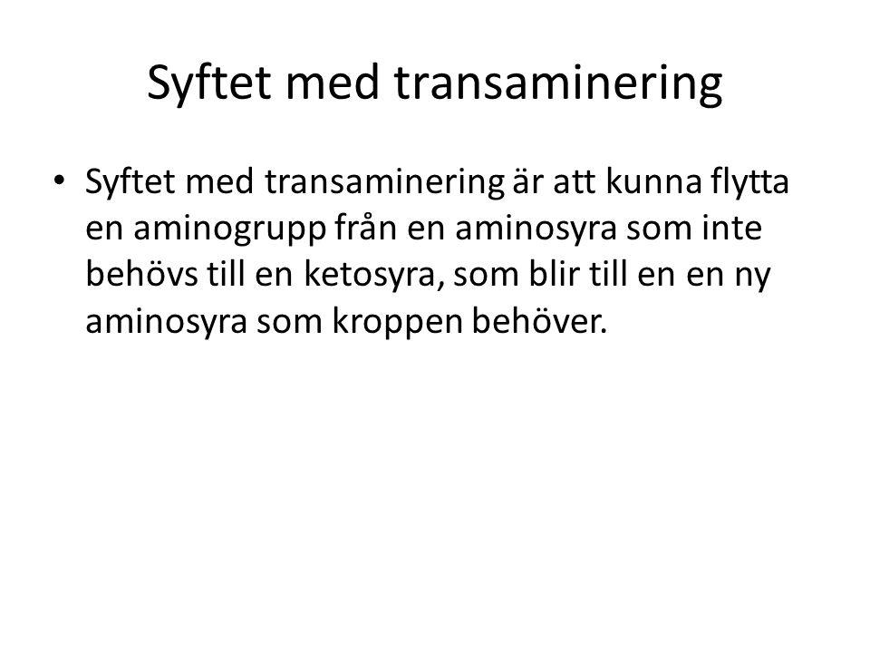 Syftet med transaminering