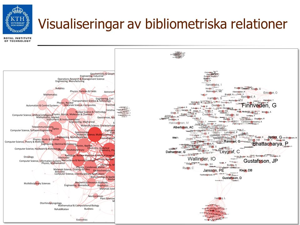 Visualiseringar av bibliometriska relationer