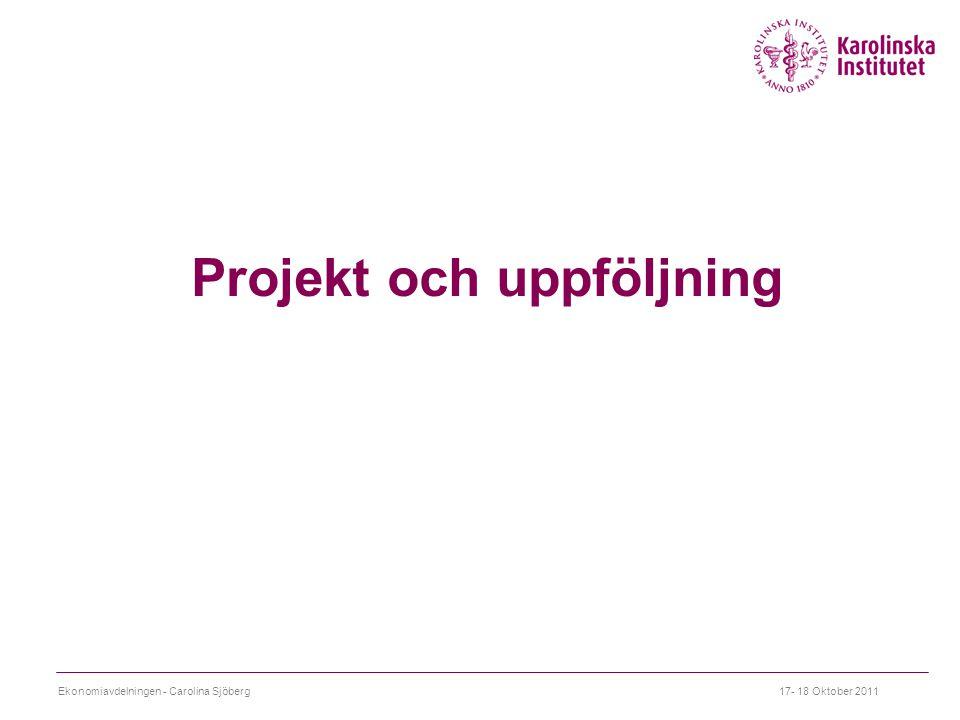 Projekt och uppföljning