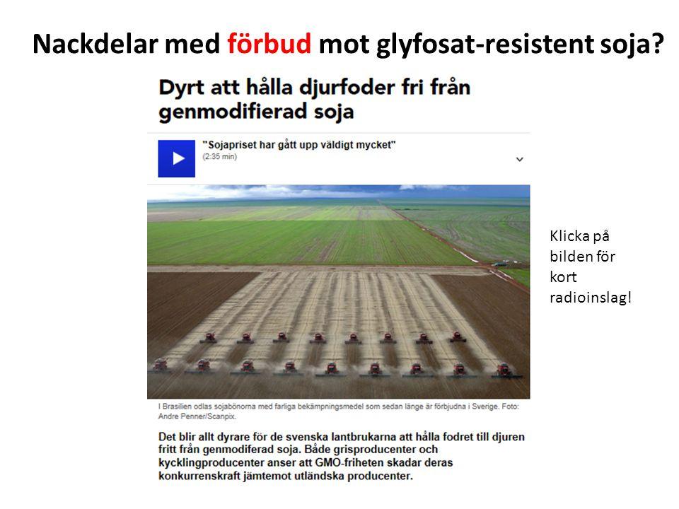 Nackdelar med förbud mot glyfosat-resistent soja