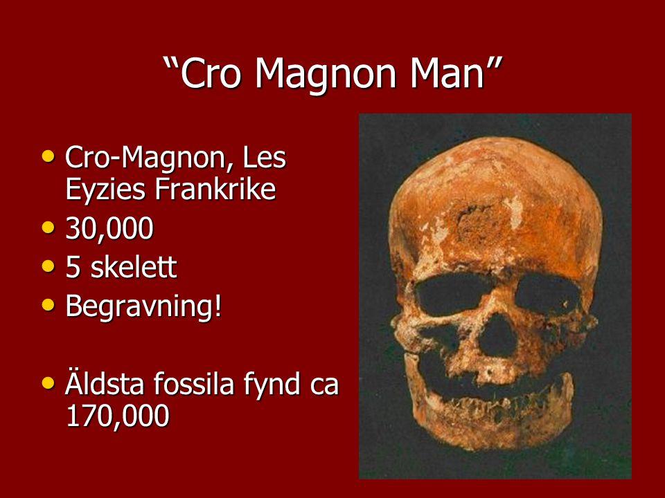 Cro Magnon Man Cro-Magnon, Les Eyzies Frankrike 30,000 5 skelett