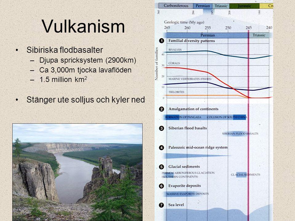 Vulkanism Sibiriska flodbasalter Stänger ute solljus och kyler ned